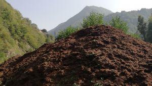 Çay fabrikalarının çay atıkları, toprağın gıdasıdır