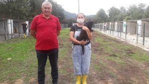 Sokak Hayvanlar İçin Rehabilitasyon Merkezi Açıldı
