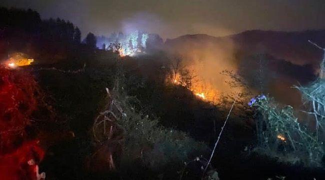 Ardeşen'in Işıklı Mahallesinde Orman Yangını Çıktı