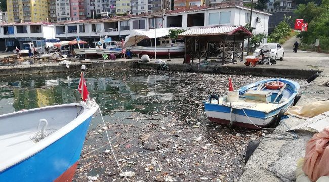 Pazar Soğuksu Balıkçı Barınağı Yüzeyi Çöplük Oldu